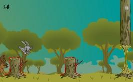 rabbit-dash- (9)