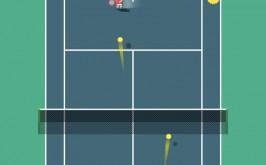 tiny-tennis-3